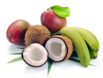 Banana e mango della noce di cocco Immagine Stock Libera da Diritti
