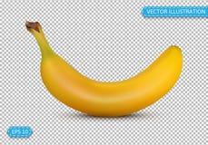 A banana em um estilo realístico isolou a ilustração do vetor em um tr Imagem de Stock Royalty Free