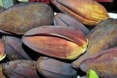 Banana flower Stock Photography