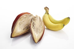 Banana flower and bananas Royalty Free Stock Image