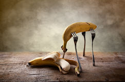 Banana on Forks Stock Photography