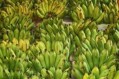 Banana fresca Fotografie Stock