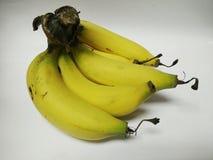 Banana fresca Imagens de Stock Royalty Free