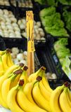 Banana and fresh fruit for sale at vegetable market Royalty Free Stock Image