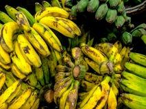 Banana - Fresh Fruit Vegetabels After Harvest Royalty Free Stock Photo