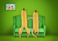 Banana fruit. Fruit  family, creative Banana concept Royalty Free Stock Photo