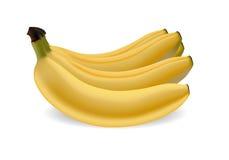 Banana fruit stock illustration