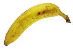 Banana fruit. Ripe banana fruit isolated on white background, DFF image, Adobe RGB Stock Photos