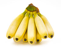Banana fruit bunch Royalty Free Stock Images