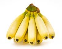 Free Banana Fruit Bunch Royalty Free Stock Images - 21304429
