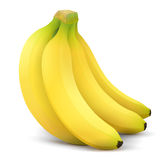 Banana fruit close up. Bunch of bananas  on white background. Qualitative vector illustration about banana, agriculture, fruits, cooking, gastronomy, etc. It has Royalty Free Stock Images