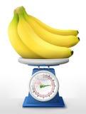 Banana fruit on scale pan Royalty Free Stock Image