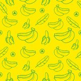 Banana fruit seamless pattern background vector format Royalty Free Stock Images