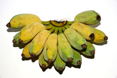 Banana Royalty Free Stock Images