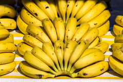 Banana fruits Stock Images