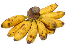 Banana Fruit Stock Photo