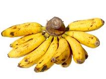 Banana Fruit Stock Photos