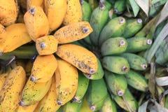 Banana gialla e verde Immagini Stock Libere da Diritti