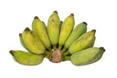 Banana grezza Immagine Stock