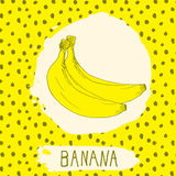 Banana hand drawn sketched fruit with leaf on background with dots pattern. Doodle vector banana for logo, label, brand identity Stock Photos