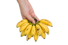 Banana in hand Stock Images