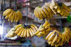 Banana hanging in asian market Stock Image