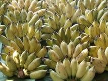 Banana Stock Image