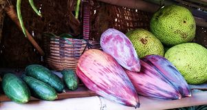 Banana heart, cucumber and other native fruits Stock Photography