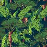 Banana i fan drzewka palmowe na zmroku - błękitny tło Obrazy Royalty Free