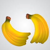 Banana illustration. Isolated on a simple background Royalty Free Stock Photo
