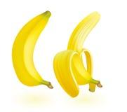 Banana illustration. Stock Photography