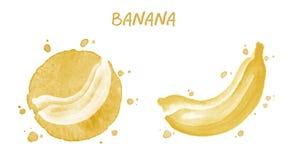 Banana Illustrazione dell'acquerello Fotografia Stock