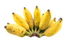 Banana isolada Imagens de Stock Royalty Free