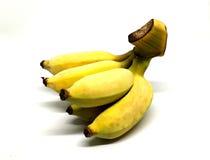Banana isolata Fotografie Stock