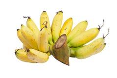 Banana isolated Stock Photos