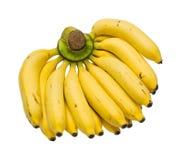 Banana isolated Royalty Free Stock Photography