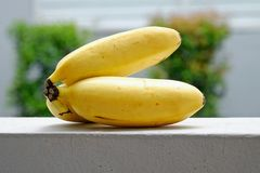Banana isolated on fence Stock Images