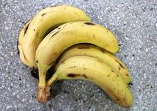 Banana, kela. Banana, plantain, French plantain, Kela, Musa x paradisiaca, yellow cylindrical fruit, a berry with rind enclosing white pulp, table fruit, young stock photo