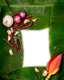 Banana leaf frame. Is composed of chili, shallots, garlic, suitable for use as Menu of Asian food, blossom of the banana tree stock photos