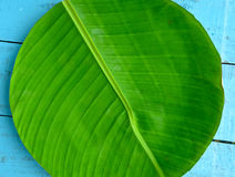Banana leaf plate Stock Image