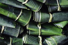 Banana leaf. Is very benefits such as food warp,package etc royalty free stock photos