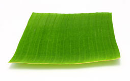 Banana leaf on white Stock Image