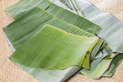 Banana leaves for sale Stock Photography