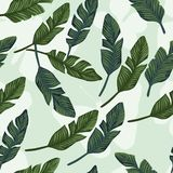Banana leaves seamless on the butterfly background stock photo