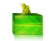 Banana leaves Tissues box Stock Photography