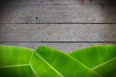 Banana leaves on wooden Royalty Free Stock Image