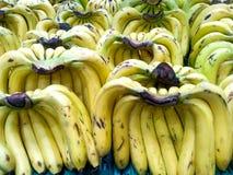 Banana, lotes do fundo saudável das bananas fotografia de stock royalty free