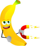 Banana with magnet Stock Photography