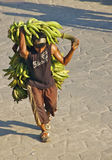 Banana Man, Colombia stock photography