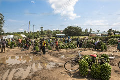 Banana Market in Africa Stock Images